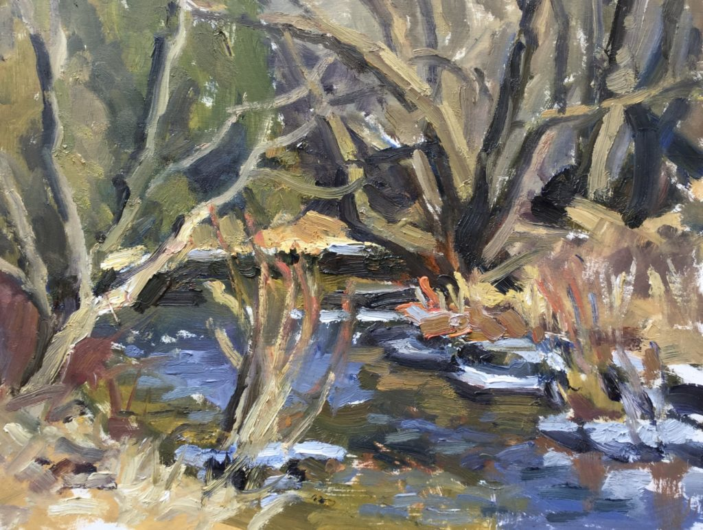 Spring, runoff, forest, creek, water, nature, landscape, trees,